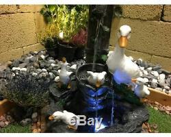 Canards Ludiques Caractéristiques Animaux D'eau, Plan D'eau En Plein Air, Fontaine De Jardin