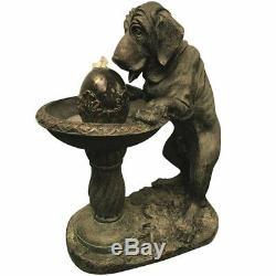Chien À L'eau Fontaine Jardin Avec Lumières Led Idée Cadeau Idéal