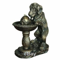 Chien Solaire À La Fontaine Eau Caractéristique Idée Cadeau Jardin Et Patio Idéal